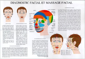 Poster plastifié Diagnostic et massage facial (A2)